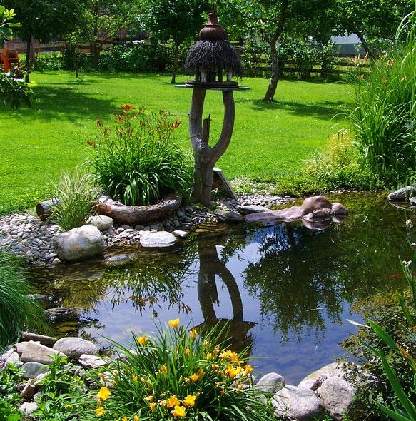 Plantes aquatiques pour bassin extérieur et décoration de ...